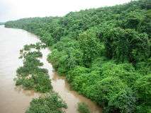 riverside zieleni Zdjęcie Royalty Free
