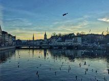 Riverside of Zurich City Royalty Free Stock Photos