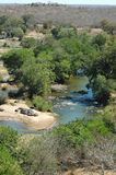 Riverview com hipopótamos fotografia de stock