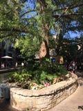 Riverwalk i San Antonio Texas Fotografering för Bildbyråer
