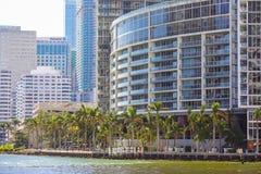 Riverwalk i stadens centrum Brickell Miami FL Arkivfoto