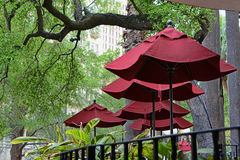 Riverwalk Maroon Umbrellas Royalty Free Stock Images