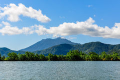 Rivery scenery in Daintree Rainforest, Australia. River scenery in Daintree Rainfoest, Queensland, Australia Royalty Free Stock Images