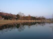 Rivesta di ferro il ponte che riflette sul fiume e sul lago del peacefull immagini stock