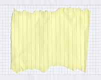 rivet fodrat paper stycke Royaltyfri Bild