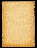 rivet gammalt ut paper ark Arkivbild