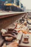 Rivet on the track and the fallen leaves Stock Photography
