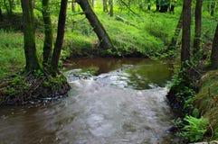 Rivière Image libre de droits