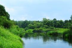 Rivière Images libres de droits