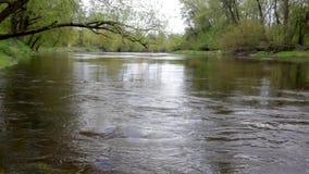 Rivière clips vidéos