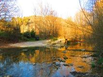 Rivière photo stock
