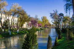 Rivière au centre de Tashkent, l'Ouzbékistan Photo stock
