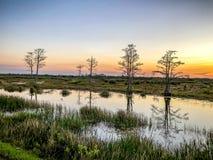 rivière au coucher du soleil dans le marais image stock