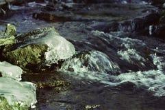 Rivière au printemps Image libre de droits