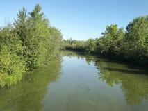 Rivière avec des arbres un jour ensoleillé d'été Images libres de droits