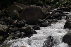 Rivière avec des roches Photographie stock libre de droits