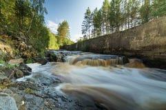Rivière avec le courant rapide en été, Photos stock