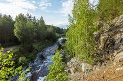 Rivière avec le courant rapide en été, Images libres de droits
