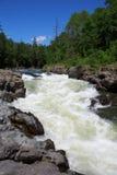 Rivière avec un courant rugueux Photo stock