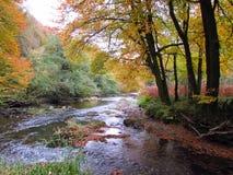 Rivière Barle Photographie stock libre de droits