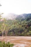 Rivière Belize de Macal Photos stock
