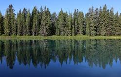 Rivière bordée d'arbres d'arc Images stock