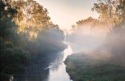 Rivière brumeuse Photo libre de droits