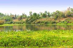 Rivière calme et forêt verte, paysage paisible gentil image libre de droits