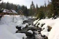 Rivière Carpathiens d'hiver Photographie stock libre de droits