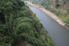 Rivière chez Bogor Photo stock