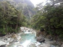 Rivière claire photos libres de droits
