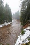 Rivière colorée par hiver scénique dans le pays Photo libre de droits