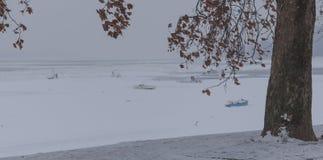 Rivière congelée en glace Photographie stock