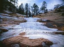 Rivière congelée en Zion Park images libres de droits