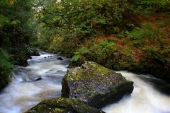 Rivière courante Photos stock