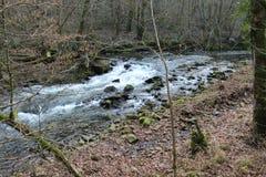 Rivière courante Photographie stock