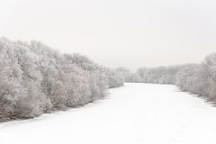 Rivière couverte de la glace et d'arbres dans le gel de givre Images stock