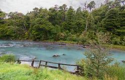 Rivière cristal de montagne rapide dans la forêt Image stock