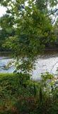 Rivière débordante calme images stock