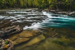 Rivière débordante claire Stationnement national de glacier, Montana, Etats-Unis Images libres de droits