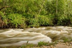 Rivière débordante en Lettonie Image libre de droits
