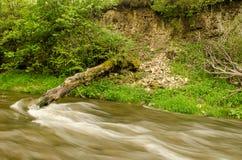 Rivière débordante en Lettonie Photos libres de droits
