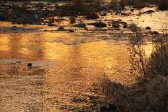 Rivière d'or Photos libres de droits