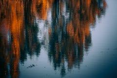 Rivière d'alamedin de temps d'automne image stock