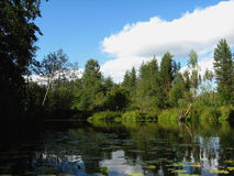 Rivière d'Atsvezh en oblasti de Kirov Rossiya Photographie stock libre de droits