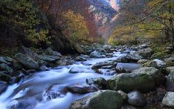Rivière d'automne Photographie stock
