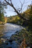 Rivière d'automne en Nova Scotia Images libres de droits