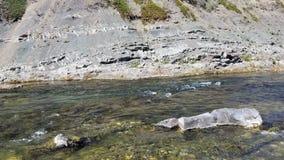 Rivière d'eau douce images stock