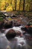 Rivière d'exposition de long temps avec les feuilles et les arbres oranges en automne de Bavière Allemagne images libres de droits