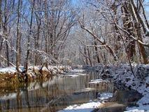 Rivière d'hiver Image libre de droits